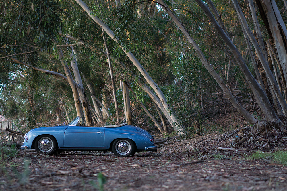 RW Speedster - Blue, side shot in the woods